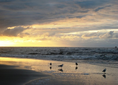 Strand von Wangerooge