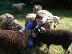 Ostfrieslandkrimi Autorin Susanne Ptak inmitten ihrer geliebten Schafe