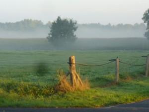 Ostfriesland - Heimat von Friesenkrimi Autorin Susanne Ptak