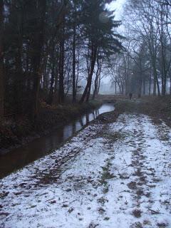 Ostfriesland - Heimat der Autorin Susanne Ptak