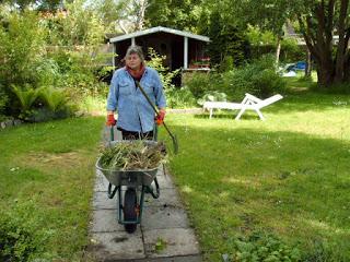 Friesenkrimi Autorin Ele Wolff in ihrem Garten