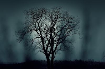 Spukiger Baum