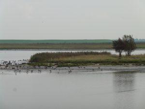 Naturschutzgebiet Leyhörn