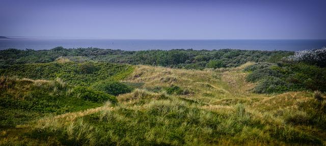 Dünenlandschaft Langeoog
