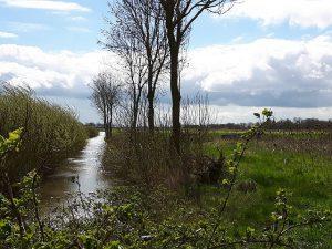 Ostfriesland Kanal