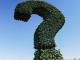 Fragezeichen Pixabay