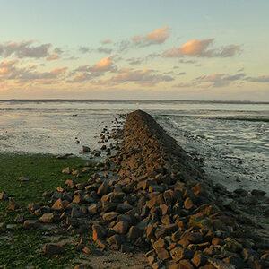 Wattenmeer Neuharlingersiel