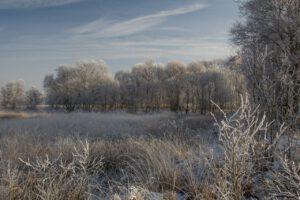 Ostfriesland - Ewiges Meer im Winter